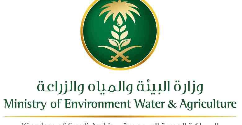 وزارة البيئة والمياه والزراعة السعودية تعلن عن توافر 453 وظيفة شاغرة