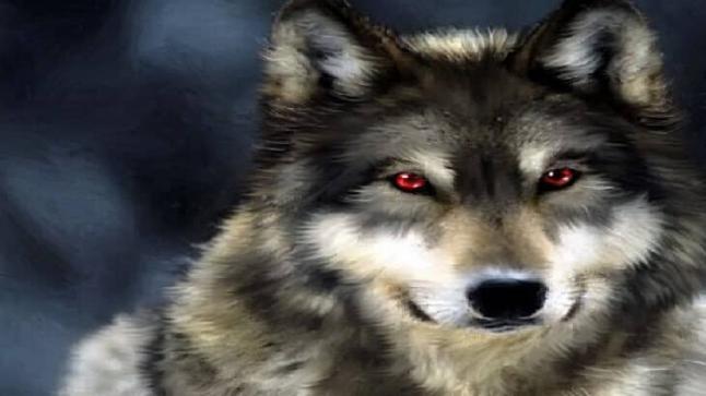 تفسير حلم الذئب في المنام لابن سيرين والنابلسي