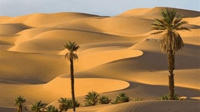 تفسير حلم الرمل في المنام