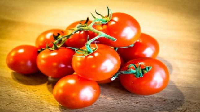 تفسير حلم الطماطم في المنام