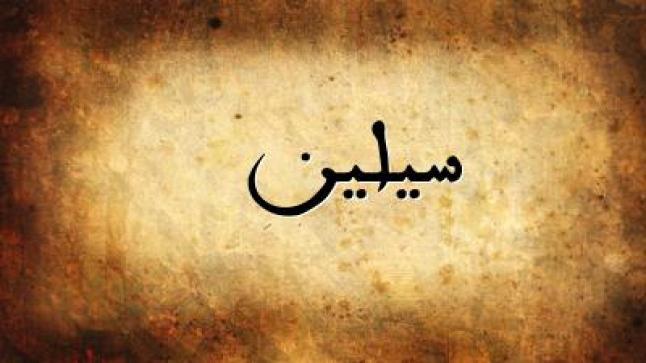 معنى اسم سيلين في المعجم الوسيط وفي اللغة التركية