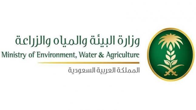 وظائف شاغرة بوزارة البيئة والمياه والزراعة السعودية، تعرف على الشروط وكيفية التقديم