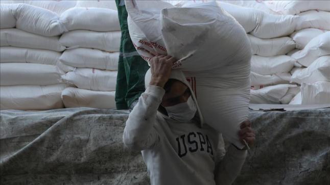 برنامج الأغذية العالمي يقر بفساد شحنة قمح أرسلها إلى اليمن