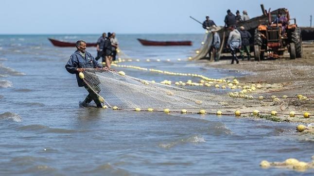 تفسير حلم صيد السمك في المنام لابن سيرين