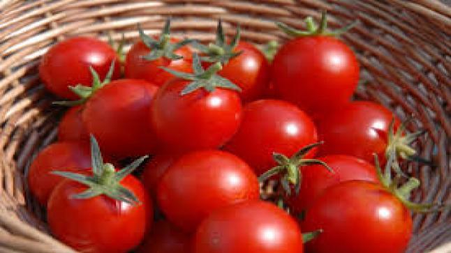 تفسير حلم الطماطم في المنام لابن سيرين والنابلسي